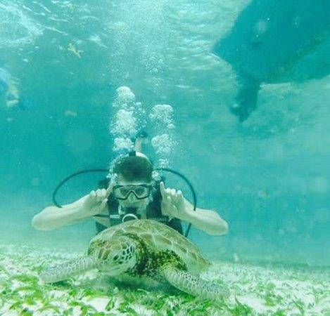 White Sands Dive Shop: Hol Chan Marine Reserve