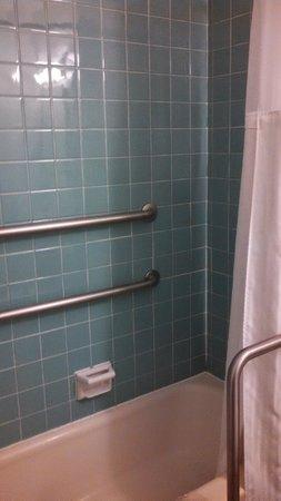 Blackwater Falls State Park Lodge: Shower w/ bathtub