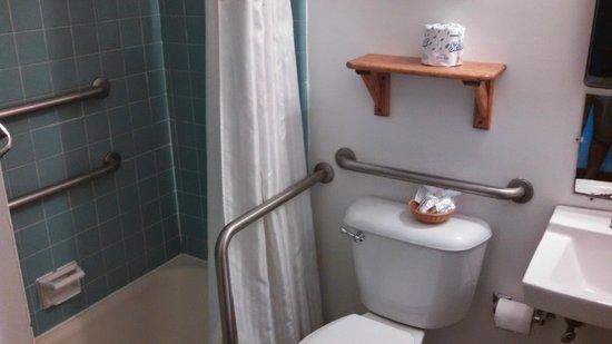 Blackwater Falls State Park Lodge: Bathroom