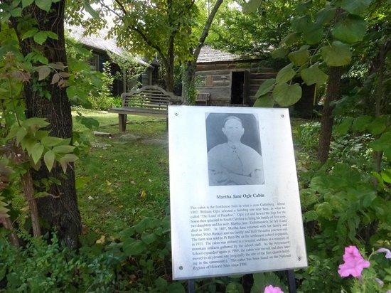 Informational Sign ON the parkway Historic Ogle Log Cabin