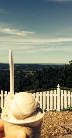 Bellvale Farms Creamery: Ice cream with a view!