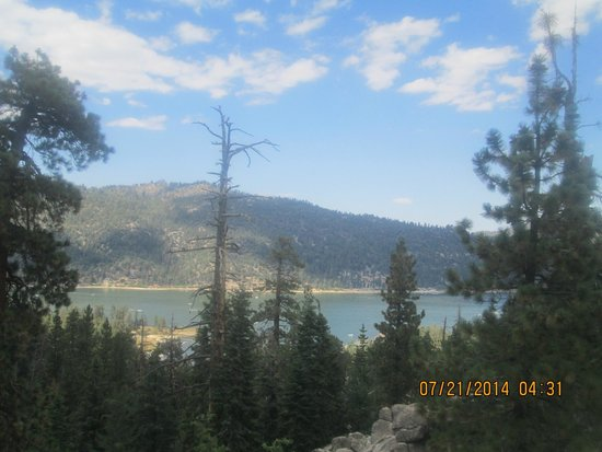 Golden Bear Cottages Resort : Beautiful Big Bear
