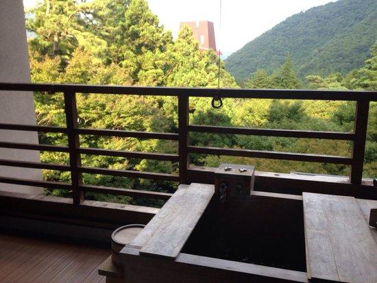 Hakone Kowakudani Onsen Mizu no To: 部屋の露天風呂