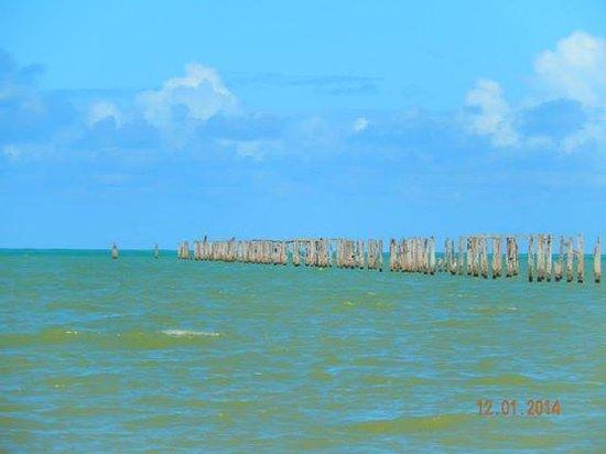 Cumuruxatiba Beach: Cumuru e as redes de pesca nativa