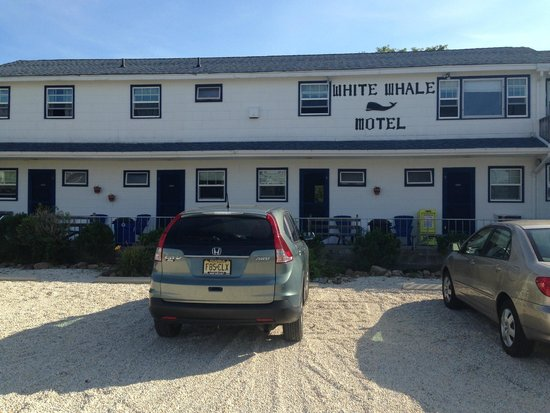 White Whale Motel: Motel