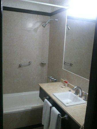 Ramada Buenos Aires: bano  (ducha por debajo de la altura normal)