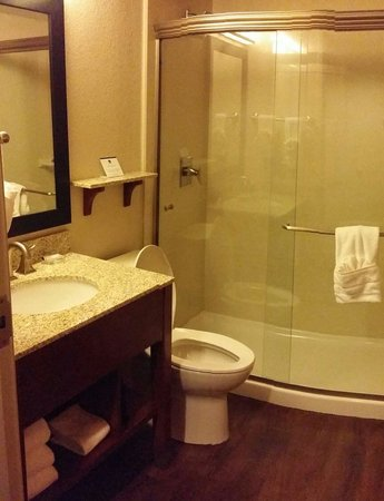 Best Western Plus Peak Vista Inn & Suites: Nice Clean Bathroom! Amazing shower head