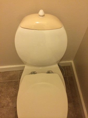 Jiminy Peak Mountain Resort: This is the toilet. You have to pull up the lever on the top to flush the toilet