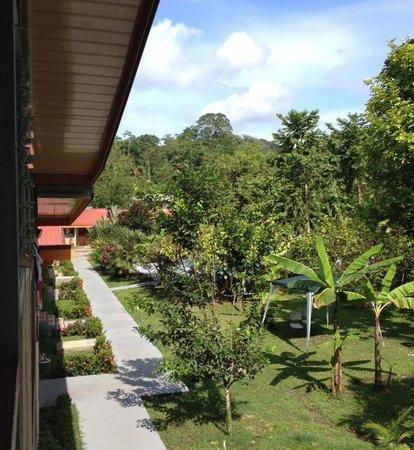 Villas Allen Puerto Viejo: vista de habitación
