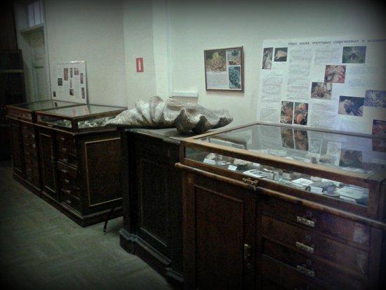 Paleontologo-Stratigrafichesky Museum