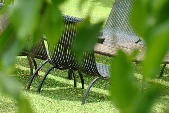 Nisala Arana: Green & relaxing views