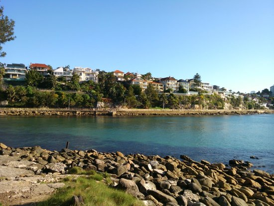Manly Scenic Walkway: 対岸から見た遊歩道