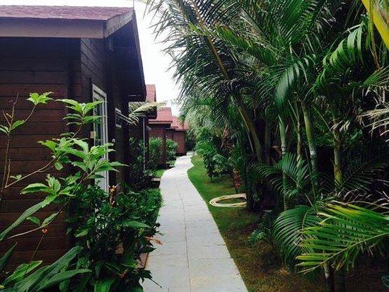 Vagator, Índia: Cottages at the back
