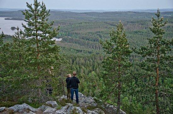 Wild Sweden - wildlife tours: amazing view