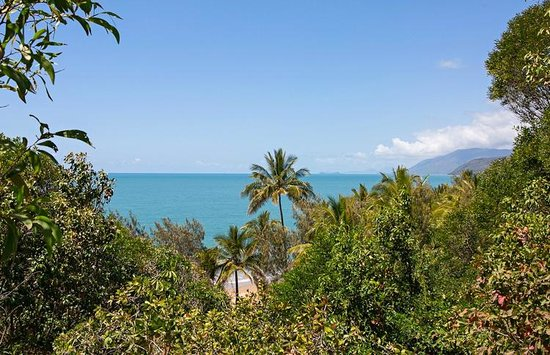 Thala Beach Nature Reserve: Coral Sea view