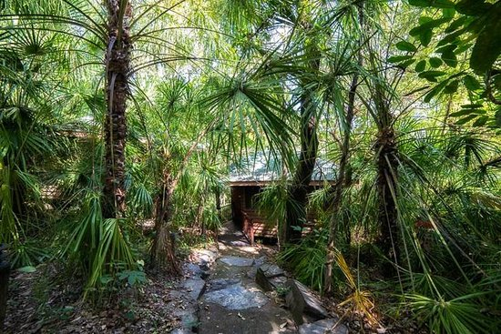 Thala Beach Nature Reserve: Pathway to Jungle Walk Bungalow