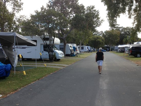 BIG4 Tweed Billabong Holiday Park : Van sites row 30