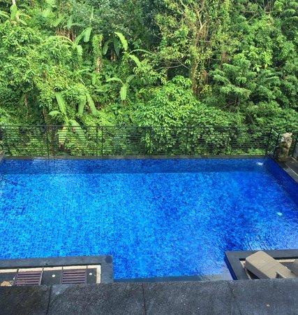 Pondok Pundi Village Inn & Spa: piscine