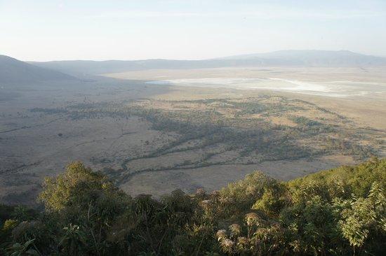 Ngorongoro Wildlife Lodge : 部屋の窓からクレーターを見下ろす