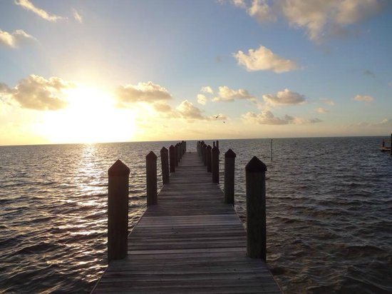 Pines and Palms Resort : Dock View