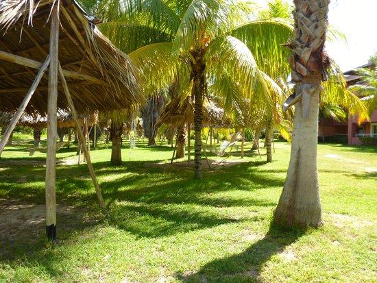 إيبيروستار سيليكشين فاراديرو: gardens full of hamocks outside our rooms