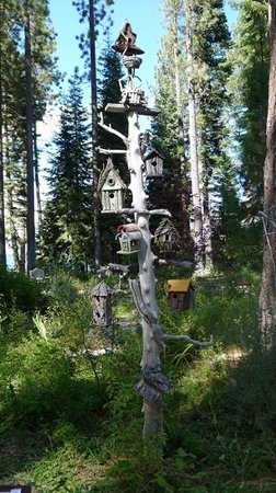 Tallac Historic Site: lovely gardens with bird house display & chipmunks running around.