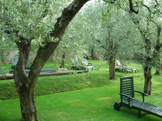 Hotel Degli Olivi: Garten mit Whirlpool und Liegen