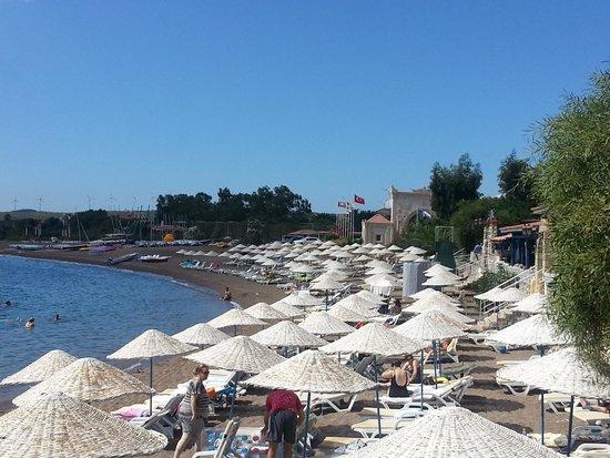 Perili Bay Resort Hotel: plaj alanı