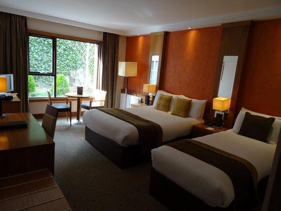 Newpark Hotel: Chambre