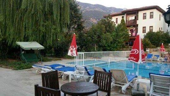 Salhan Apart Inn: Salhan pool area