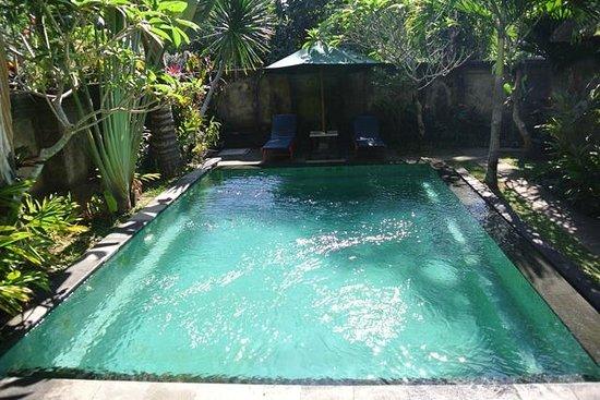 Alas Petulu Cottages: Pretty large pool