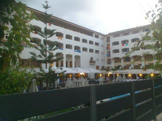 Theartemis Palace Hotel: zone principale