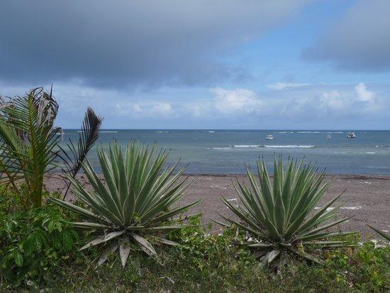 Ocean Sports Resort: Ocean view