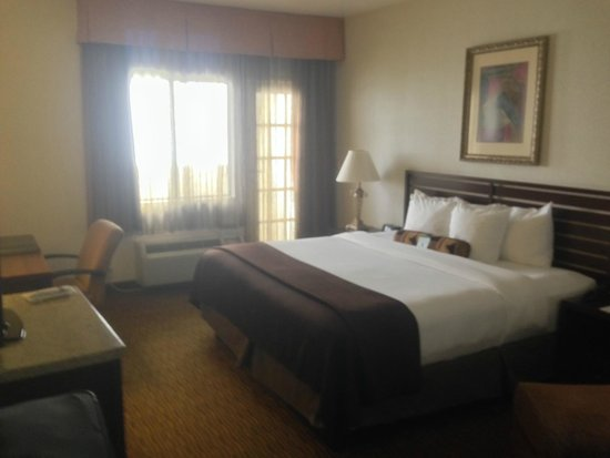 BEST WESTERN PLUS Hotel at the Convention Center : King bed