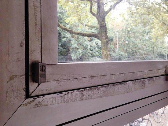 Aalborg Hotel Amsterdam: never cleaned window