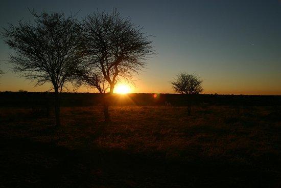 写真Kalahari Bush Breaks枚
