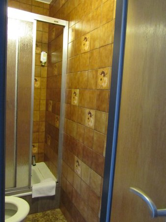Hotel Rothenburger Hof: small bathroom but worked fine for me