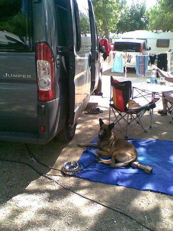 siesta photo de camping bon repos santa susanna tripadvisor. Black Bedroom Furniture Sets. Home Design Ideas
