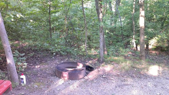 Basswood Country Inn and RV Resort: Tent site