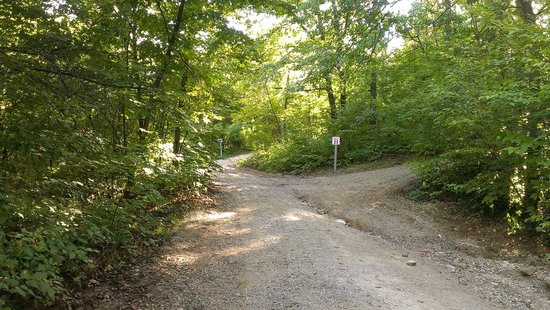 Basswood Country Inn and RV Resort: Road up to the tent sites