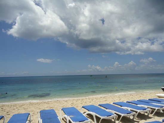 Mr Sanchos Beach Club Cozumel : The beach at Mr Sanchos