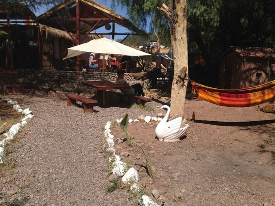 Portal Andino Lodge: Around the lodge...