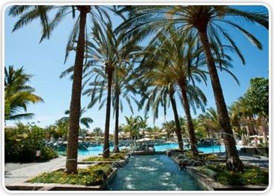 Palm Oasis Maspalomas: VISTA BONITA