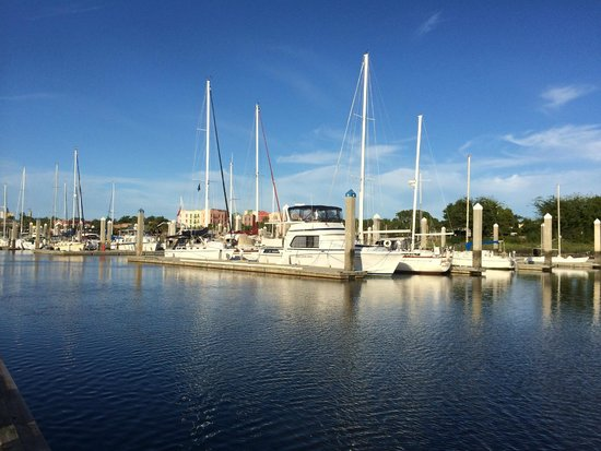 The Addison on Amelia Island: The marina a couple blocks away