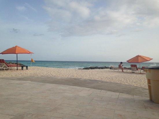 أوشن تو ريزورت آند رزيدنسز: The Beach