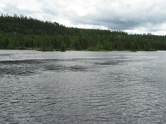 Horseshoe Island Camp: Scenery Around the Lake and areas for great fishing