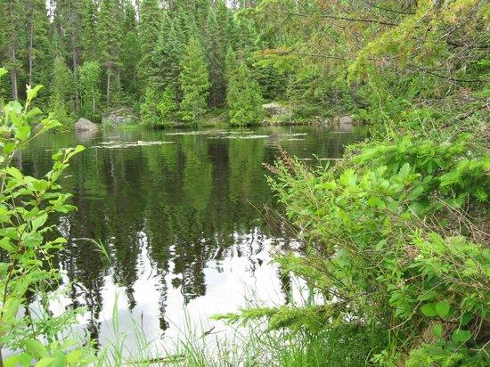 Horseshoe Island Camp: Peace and Serenity all around the lake