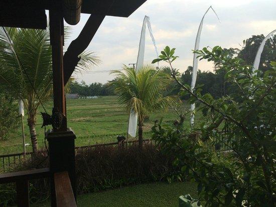 Onje Resort and Villas : vue