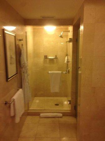 The Ritz-Carlton, Fort Lauderdale: shower