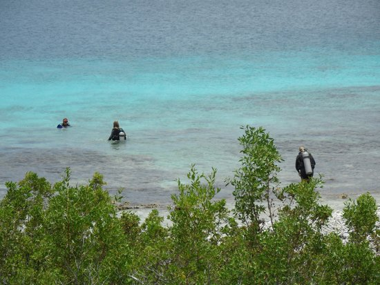 Sabadeco, Bonaire : From the villa into the water